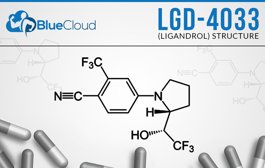 LGD 4033 Review: Do Not Buy Ligandrol Until You Read This! [2019]