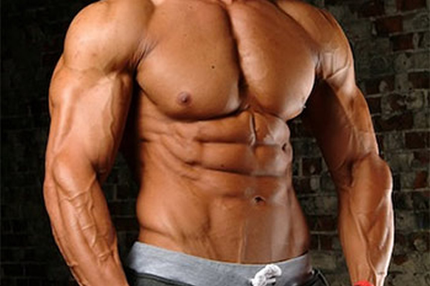 Build muscle with SARMs