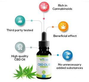 Best CBD Oil Guide