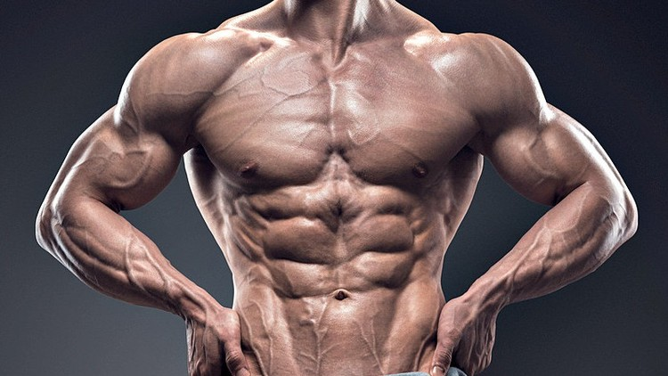 Anadrol Review: The True Power Of Oxymetholone Revealed [2019]